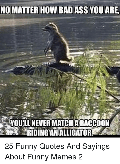 Ass, Bad, and Funny: NO MATTER HOW BAD ASS YOU ARE,  YOULL NEVER MATCHARACCOON  RIDINGANALLIGATOR 25 Funny Quotes And Sayings About Funny Memes 2