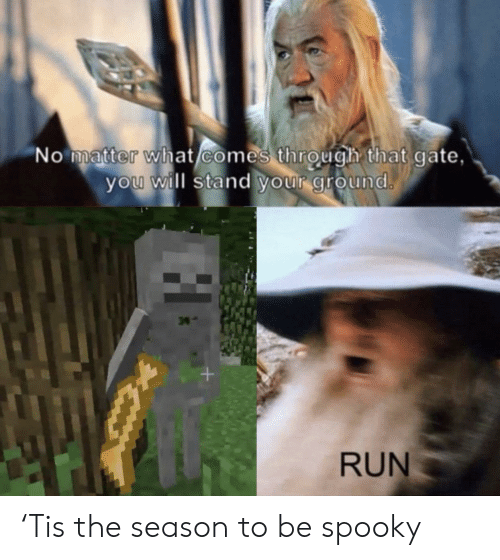 Run, Spooky, and Gate: 'No matter what comes through that gate,  you will stand your ground.  34  +  RUN 'Tis the season to be spooky