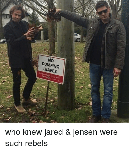 Memes, Jared, and 🤖: No  O  DUMPING  LEAVES who knew jared & jensen were such rebels