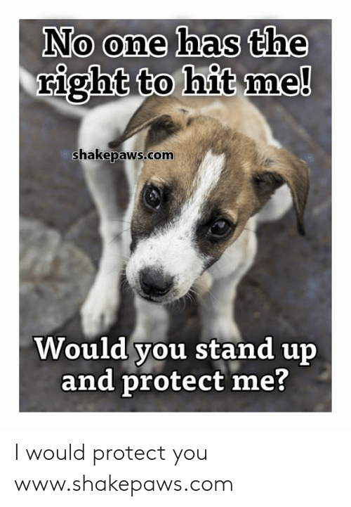 Protect You: No one has the  right to hit me!  shakepaws.com  Would you stand up  and protect me? I would protect you www.shakepaws.com