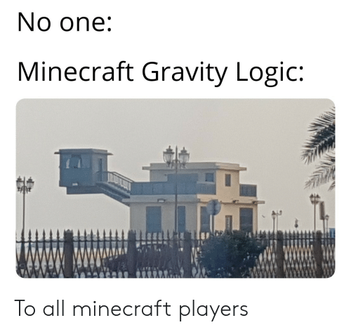 Logic, Minecraft, and Gravity: No one:  Minecraft Gravity Logic: To all minecraft players