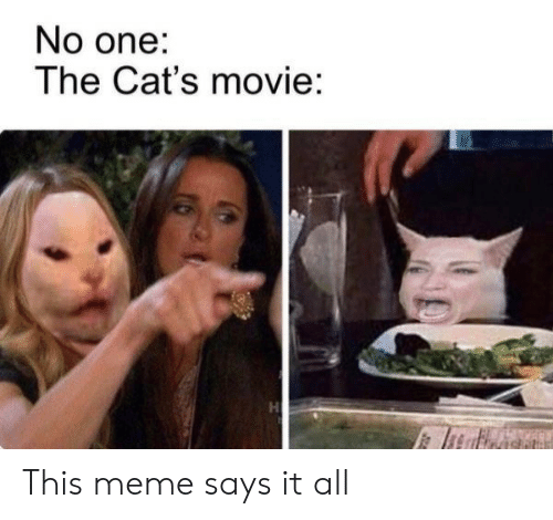 Cats, Meme, and Movie: No one:  The Cat's movie:  H This meme says it all