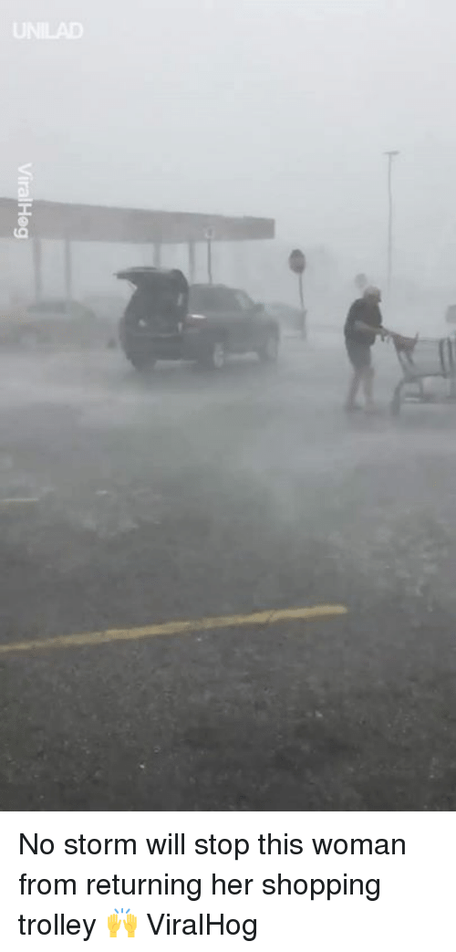 Dank, Shopping, and Trolley: No storm will stop this woman from returning her shopping trolley 🙌  ViralHog