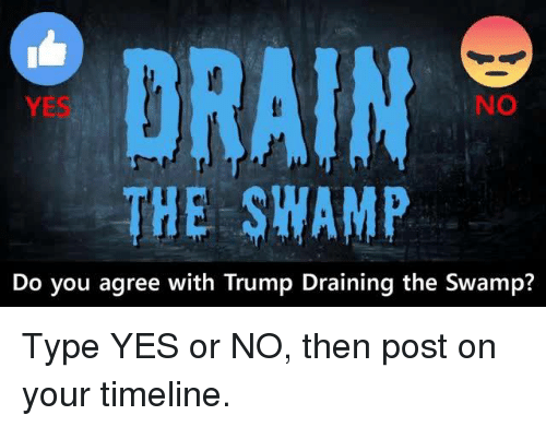 Trump, Yes, and You: NO  THE SWAMP  Do you agree with Trump Draining the Swamp? Type YES or NO, then post on your timeline.