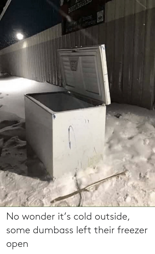 Wonder: No wonder it's cold outside, some dumbass left their freezer open