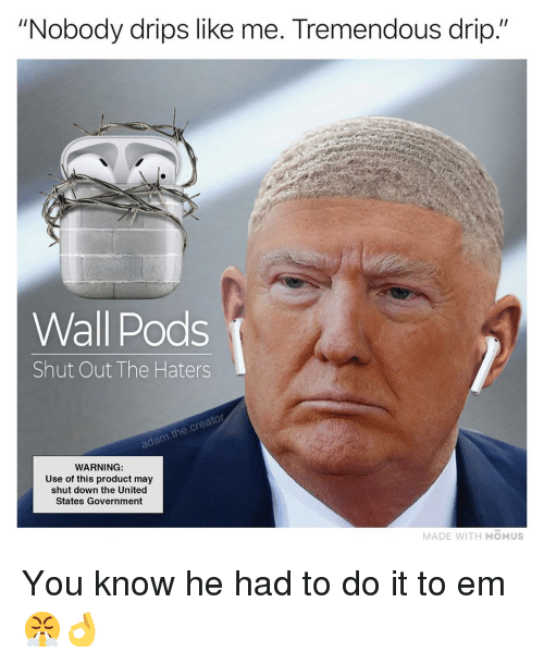 "Memes, United, and Government: ""Nobody drips like me. Tremendous drip.""  Wall Pods  Shut Out The Haters  adam.the.creator  WARNING  Use of this product may  shut down the United  States Government  MADE WITH MOMUS You know he had to do it to em 😤👌"