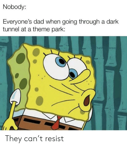 Dad, Dark, and Can: Nobody:  Everyone's dad when going through a dark  tunnel at a theme park:  thatV erson They can't resist