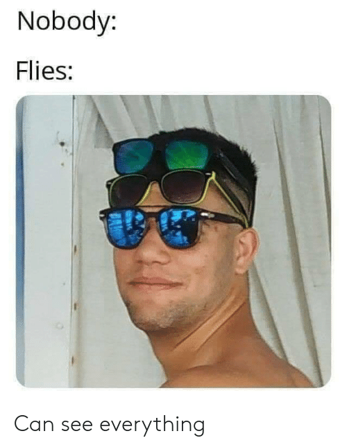 Can, Everything, and Nobody: Nobody:  Flies:  BA Can see everything