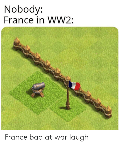 ww2: Nobody:  France in WW2: France bad at war laugh