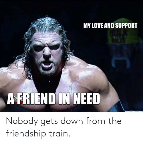 Train: Nobody gets down from the friendship train.