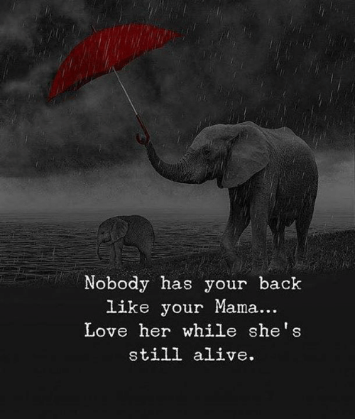 Alive, Love, and Back: Nobody has your back  like your Mama...  Love her while she's  still alive.