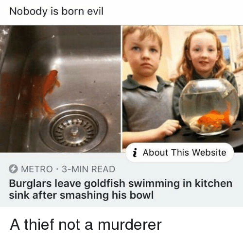 Goldfish, Metro, and Evil: Nobody is born evil  About This Website  METRO 3-MIN READ  Burglars leave goldfish swimming in kitchern  sink after smashing his bowl