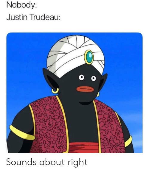 Trudeau: Nobody:  Justin Trudeau: Sounds about right