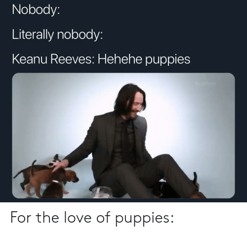Love, Puppies, and Keanu Reeves: Nobody:  Literally nobody:  Keanu Reeves: Hehehe puppies For the love of puppies: