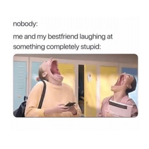 Funny, Laughing, and Bestfriend: nobody:  me and my bestfriend laughing at  something completely stupid: