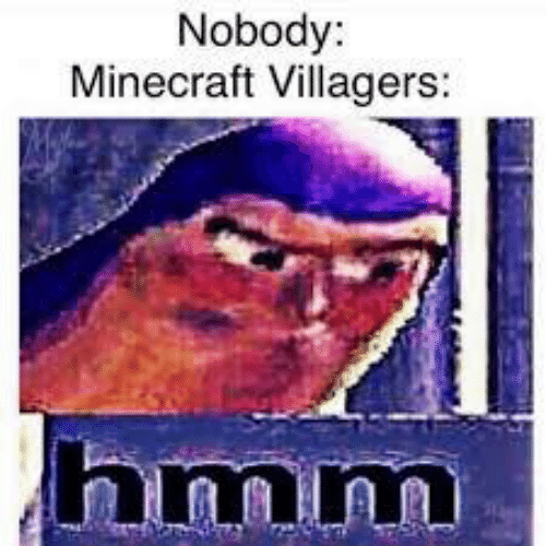 Minecraft, Hmm, and Nobody: Nobody:  Minecraft Villagers:  hmm