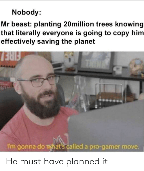 thin: Nobody:  Mr beast: planting 20million trees knowing  that literally everyone is going to copy him  effectively saving the planet  FIRE  THIN  I'm gonna do what's called a pro-gamer move. He must have planned it