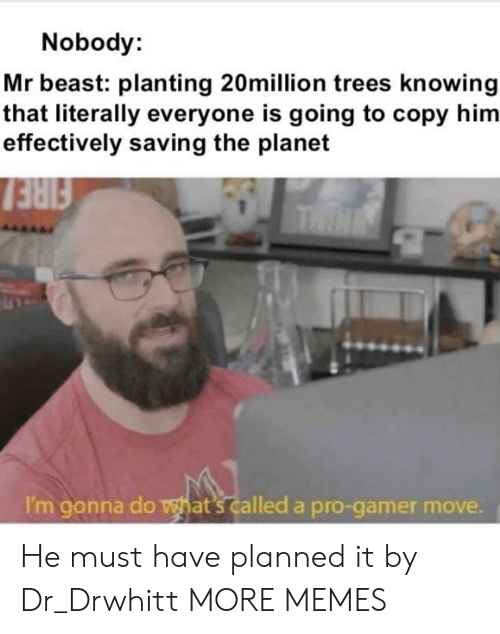 Dank, Fire, and Memes: Nobody:  Mr beast: planting 20million trees knowing  that literally everyone is going to copy him  effectively saving the planet  FIRE  THIN  I'm gonna do what's called a pro-gamer move. He must have planned it by Dr_Drwhitt MORE MEMES