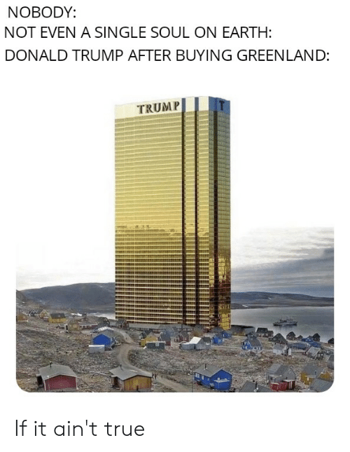 Donald Trump, Reddit, and True: NOBODY:  NOT EVEN A SINGLE SOUL ON EARTH:  DONALD TRUMP AFTER BUYING GREENLAND:  TRUMP  und  PHe If it ain't true