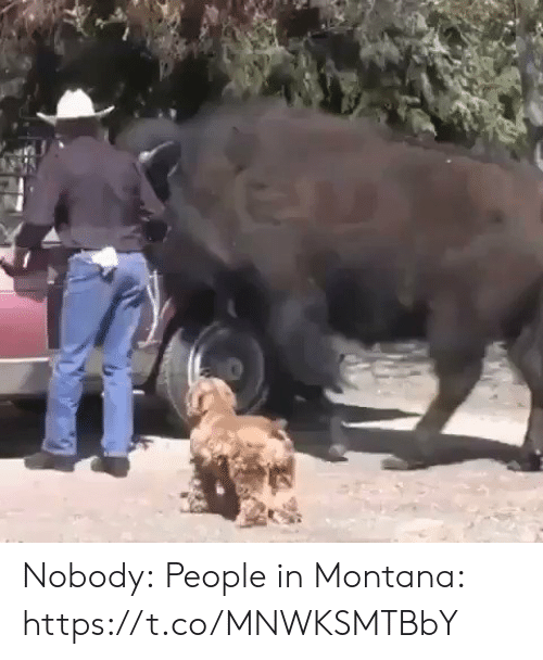Funny, Montana, and People: Nobody:  People in Montana: https://t.co/MNWKSMTBbY