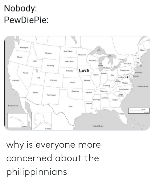 New York, Alaska, and Arizona: Nobody  PewDiePie:  Washington  Lake  Maine  North Dakota  peier  Montana  Minnesota  Oregon  NH  Wisconsin  Idaho  South Dakota  MA  Lae  New York  Wyoming  RI  LEe  Michigan  Lova  Peansylvania  Nebraska  Nevada  New Janey  Indiana  Iincés  Ohio  Delaware  Utah  Wes  Vartu  Colorado  Missouri  Califomia  Kansas  Virginia  Kentucky  Alanic Ocean  Nerth Carolina  Oklahoma  Tennessee  Arizona  Arkansas  Sout  aroina  New Mexico  Alabarna  Missssipp  Georgia  Louisiana  Pacific Ocean  Texas  Florida  Gulf of Mexico  HAWAII  ALASKA why is everyone more concerned about the philippinnians