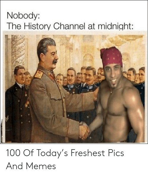 history channel: Nobody:  The History Channel at midnight: 100 Of Today's Freshest Pics And Memes