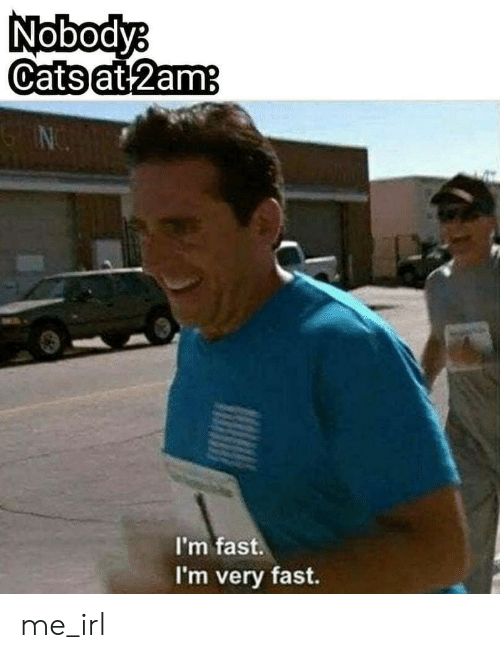 Irl, Me IRL, and Fast: Nobodyb  Catsat 2  am  I'm fast.  I'm very fast. me_irl