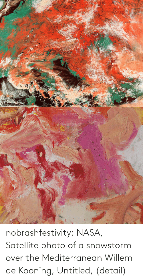 photo: nobrashfestivity:  NASA, Satellite photo of a snowstorm over the Mediterranean  Willem de Kooning, Untitled, (detail)
