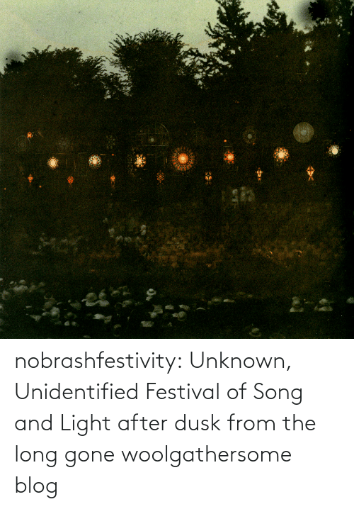 Tumblr, Blog, and Festival: nobrashfestivity: Unknown,   Unidentified Festival of Song and Light after dusk   from the long gone woolgathersome blog