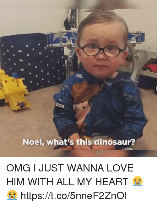 dinosaure: Noel, what's this dinosaur? OMG I JUST WANNA LOVE HIM WITH ALL MY HEART 😭😭 https://t.co/5nneF2ZnOI