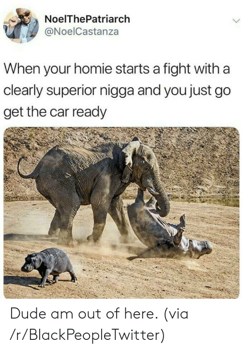 Blackpeopletwitter, Dude, and Homie: NoelThePatriarch  @NoelCastanza  When your homie starts a fight with a  clearly superior nigga and you just go  get the car ready Dude am out of here. (via /r/BlackPeopleTwitter)