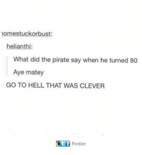 Cleverity: nomestuckorbust:  helianthi:  What did the pirate say when he turned 80  Aye matey  GO TO HELL THAT WAS CLEVER  Ttf Postize