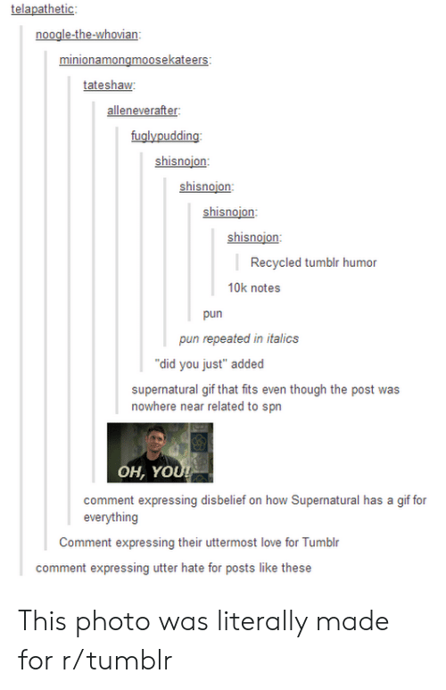 """spn: noogle-the-whovian  tateshaw  alleneverafter:  fuglypudding  shisnojon  shisnojon:  shisnoion:  hin  Recycled tumblr humor  10k notes  pun  pun repeated in italics  """"did you just"""" added  supernatural gif that fits even though the post was  nowhere near related to spn  OH, YO  comment expressing disbelief on how Supernatural has a gif for  everything  Comment expressing their uttermost love for Tumblr  comment expressing utter hate for posts like these This photo was literally made for r/tumblr"""