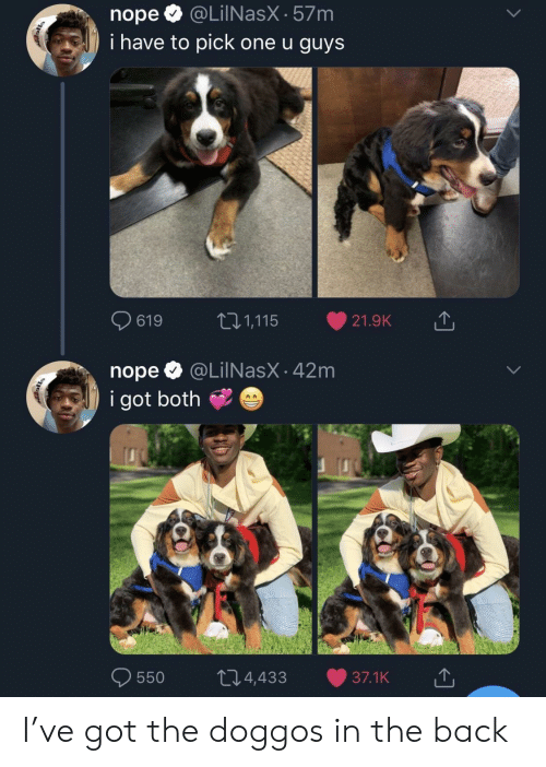 Pick One: nopeQ @LilNasX-57m  i have to pick one u guys  0619  t: 1,115-21.9K  nope @LilNasX - 42m  i got both  0550 t 4,433 37.1K I've got the doggos in the back
