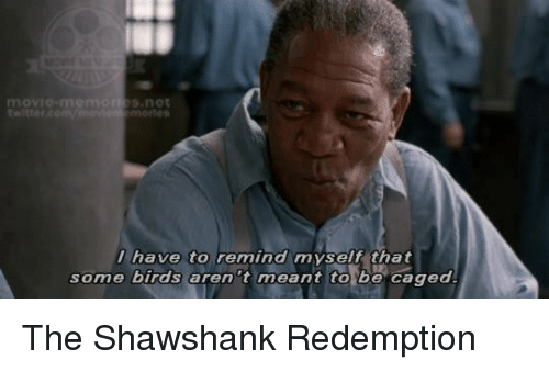 25 best memes about shawshank shawshank memes for Some birds aren t meant to be caged tattoo