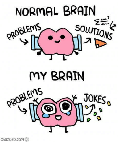 Brain, Jokes, and Com: NORMAL BRAIN  SOLUTIONS  PROBLEMS  MY BRAIN  JOKES  PROBLEMS  OWLTURD.COm