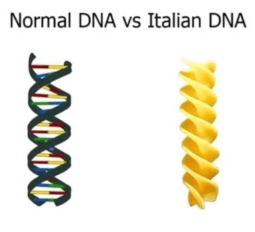 Dna, Italian, and Normal: Normal DNA vs Italian DNA