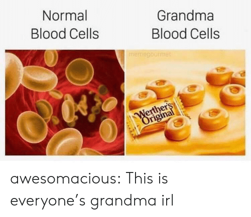 cells: Normal  Grandma  Blood Cells  Blood Cells  memegourmet  Werthers  Original awesomacious:  This is everyone's grandma irl