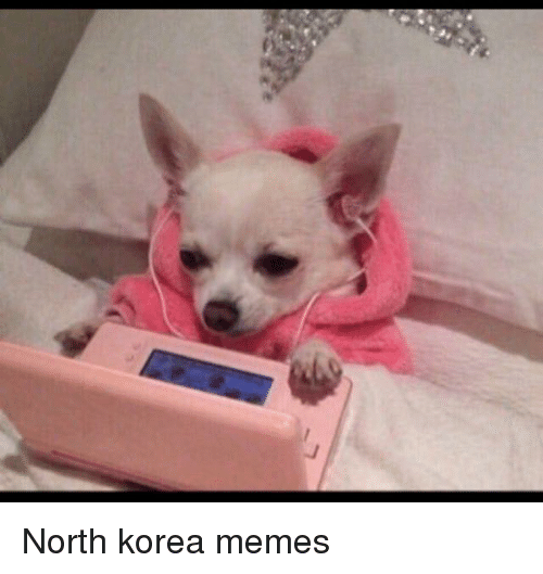 North Korea Meme: North korea memes