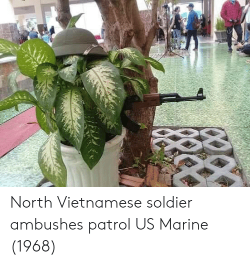 Vietnamese, Marine, and Soldier: North Vietnamese soldier ambushes patrol US Marine (1968)