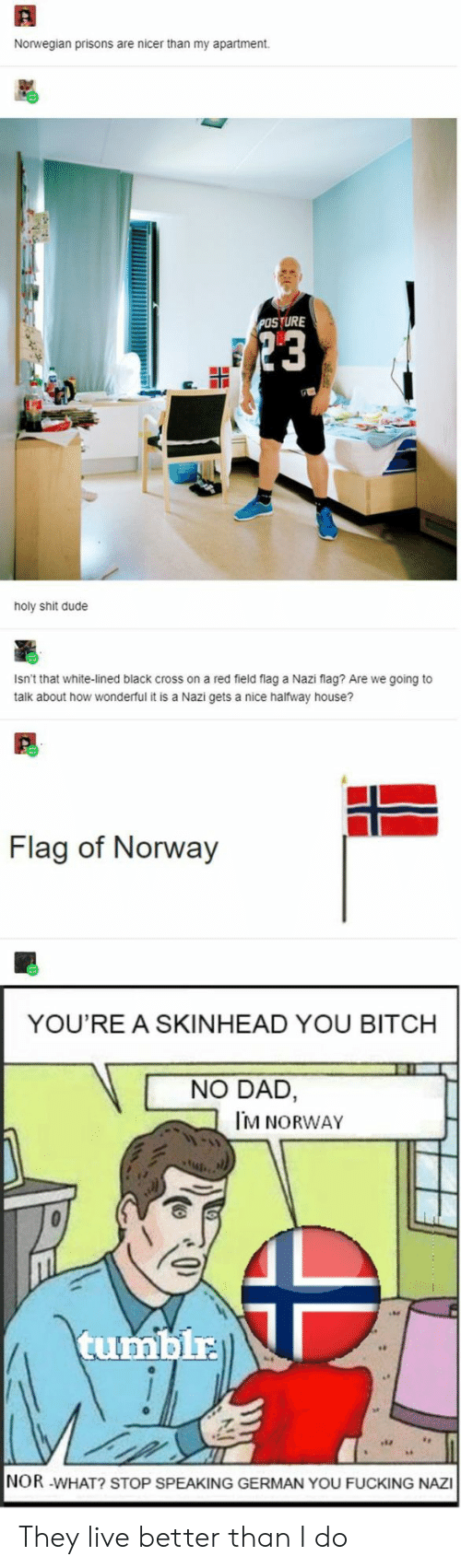 Bitch, Dad, and Dude: Norwegian prisons are nicer than my apartment  POSTURE  23  holy shit dude  Isn't that white-lined black cross on a red field flag a Nazi flag? Are we going to  talk about how wonderful it is a Nazi gets a nice halfway house?  Flag of Norway  YOU'RE A SKINHEAD YOU BITCH  NO DAD,  M NORWAY  tumblr  NOR -WHAT? STOP SPEAKING GERMAN YOU FUCKING NAZI They live better than I do