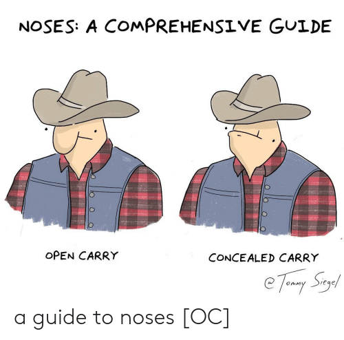 comprehensive: NOSES: A COMPREHENSIVE GUIDE  OPEN CARRY  CONCEALED CARRY  eqe a guide to noses [OC]