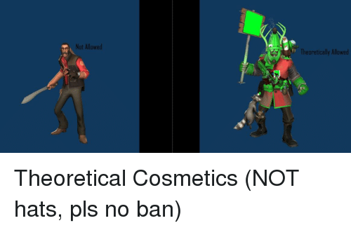 Not Allowed Theoretically Allowed   Team Fortress 2 Meme on