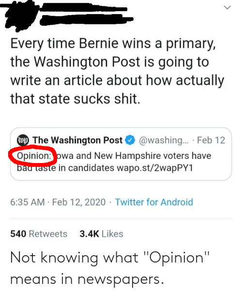 "means: Not knowing what ""Opinion"" means in newspapers."