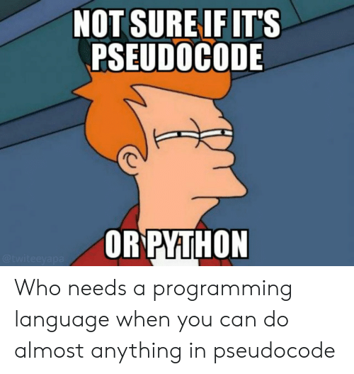 Programming, Who, and Language: NOT SURE IF IT'S  PSEUDOCODE  ORPYTHON  @twiteeyapa Who needs a programming language when you can do almost anything in pseudocode