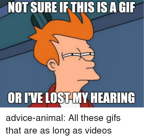 Advice, Gif, and Tumblr: NOT SURE IFTHIS IS A GIF  OR IVE LOSTMY HEARING advice-animal:  All these gifs that are as long as videos