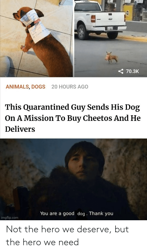 But The: Not the hero we deserve, but the hero we need