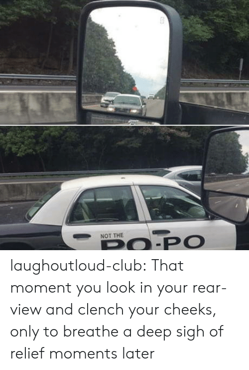 Club, Tumblr, and Blog: NOT THE  PO.PO laughoutloud-club:  That moment you look in your rear-view and clench your cheeks, only to breathe a deep sigh of relief moments later