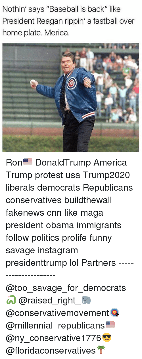 """America, Baseball, and cnn.com: Nothin' says """"Baseball is back"""" like  President Reagan rippin' a fastball over  home plate. Merica. Ron🇺🇸 DonaldTrump America Trump protest usa Trump2020 liberals democrats Republicans conservatives buildthewall fakenews cnn like maga president obama immigrants follow politics prolife funny savage instagram presidenttrump lol Partners --------------------- @too_savage_for_democrats🐍 @raised_right_🐘 @conservativemovement🎯 @millennial_republicans🇺🇸 @ny_conservative1776😎 @floridaconservatives🌴"""