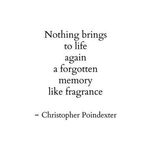 Life, Memory, and Christopher: Nothing brings  to life  again  forgotten  a  memory  like fragrance  - Christopher Poindexter